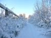 montana_winterproof_01